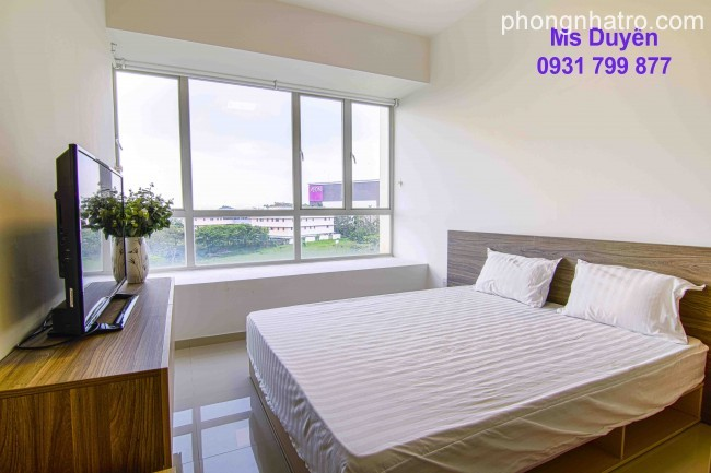 Apartments for Short-term Leasing in VSIP1, Fully furnished
